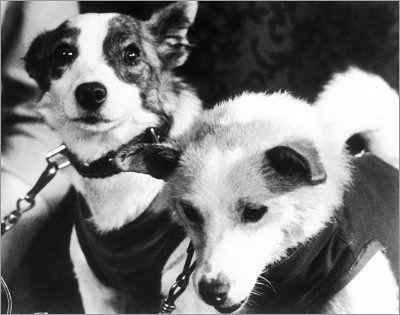 belka_and_strelka_400px-1